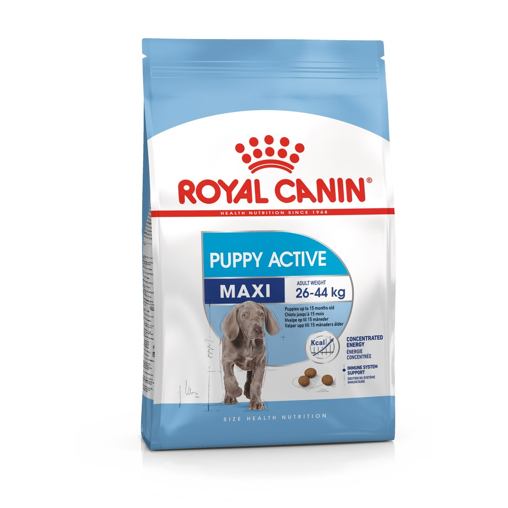 Puppy Food Royal Canin  Maxi Puppy Active, 4 kg