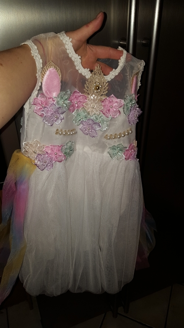 Unicorn Flowers Embroidery Princess Dresses photo review