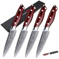 Steak Knife Set 4 pcs Damascus Kitchen Knives vg10 Japanese Damascus Steel Utility Knives 67 Layers Family Christmas Gift Tools
