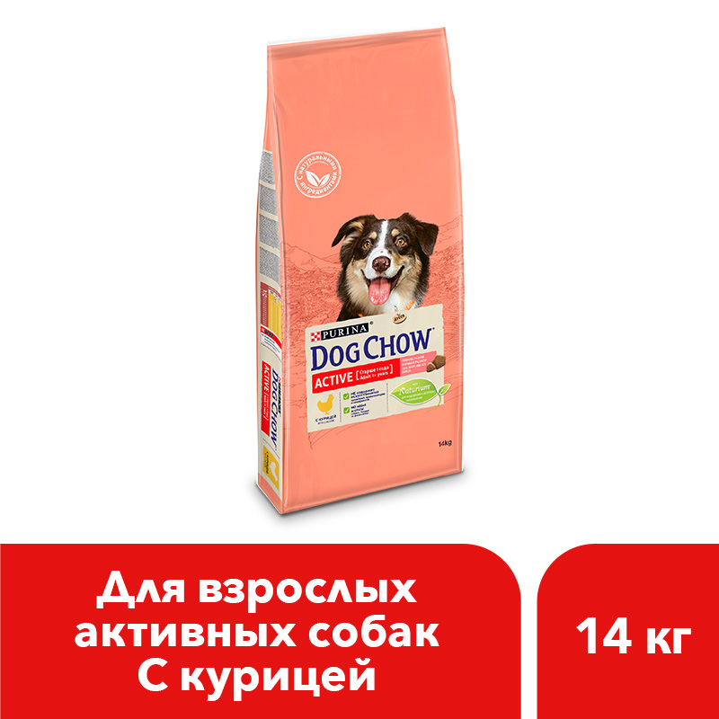Dog Chow dry food for adult active dogs over 1 year old with chicken, 14 kg