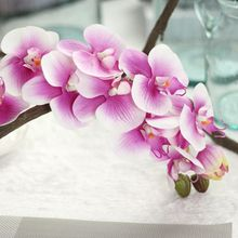1pc 11heads artificial latex butterfly orchid 72cm for wedding decoration phalaenopsis colorful real touch flower