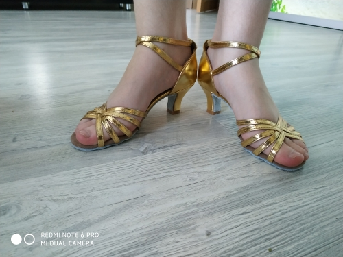 Sapatos de dança Mulheres Sapatos Sapatos