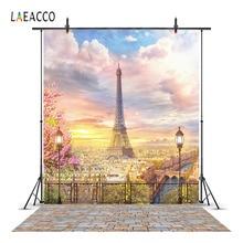 Laeacco Sunset Cloudy Sky Eiffel Tower Paris View Platform Photography Backgrounds Vinyl Custom Backdrops Props For Photo Studio