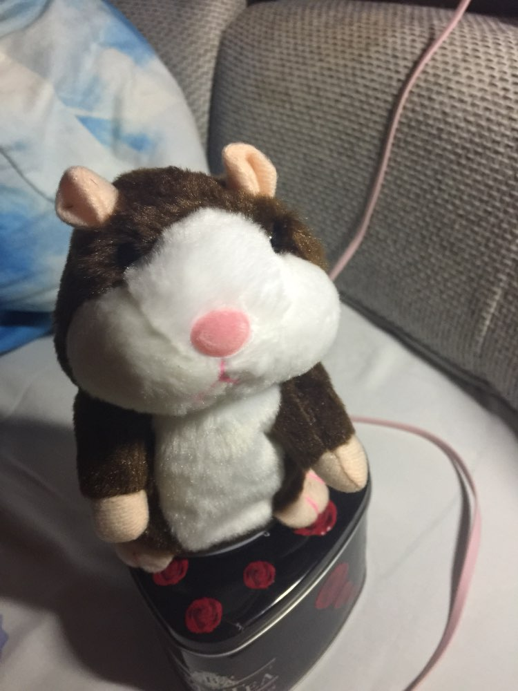 Moonbiffy™ Talking Hamster Toy photo review