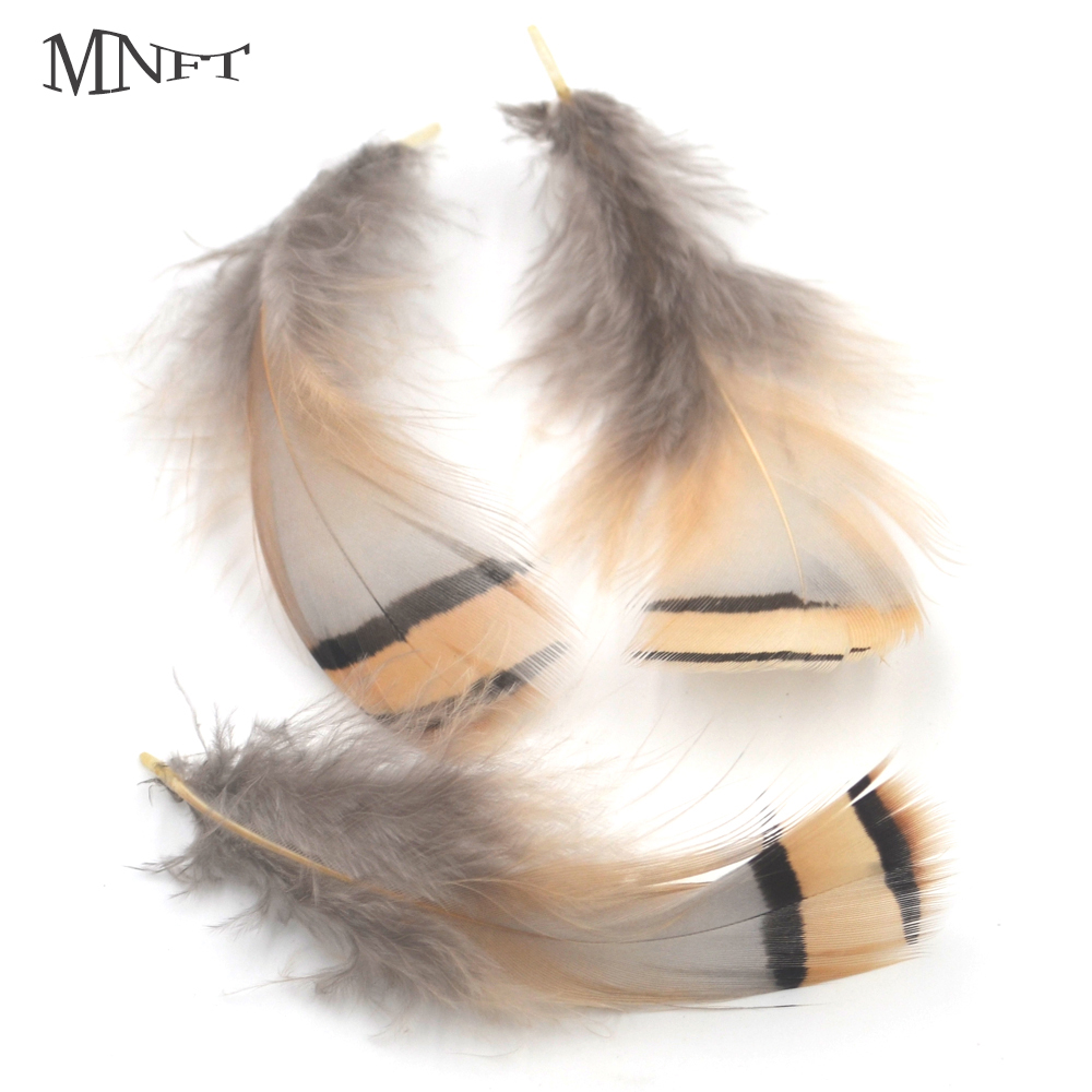 Feathers Black and Gold 3-4 inch Dark Lace Ginger