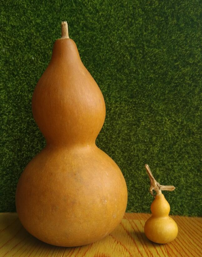 2530cm:  25~30cm Natural Bottle Gourd Dried Fruit Hand Gourd Feng shui Mascot Home Decoration DIY Doodle Carving Hanging Gifts ToysC23 - Martin's & Co