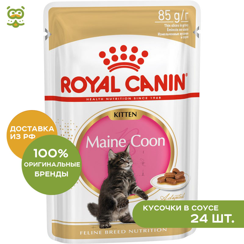Cat wet food Royal Canin Maine Coon Kitten spider for Maine Coon cats (pieces in sauce) 24*85 gr cat wet food royal canin instinctive 7 spider for cats over 7 years old pieces in sauce 24 85 g