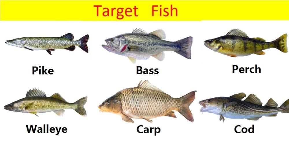 targetfish