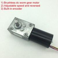 Wholesale 5840 3650 Brushless Dc Motor Worm Gear Motor With 24v Brushless Motor For Reversible 12 Volt Gear Motor