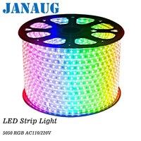 220 В Светодиодные ленты 5050 50 м 100 м IP67 Водонепроницаемый RGB двойной Цвет веревки для наружного освещения с РФ пульта дистанционного управлени