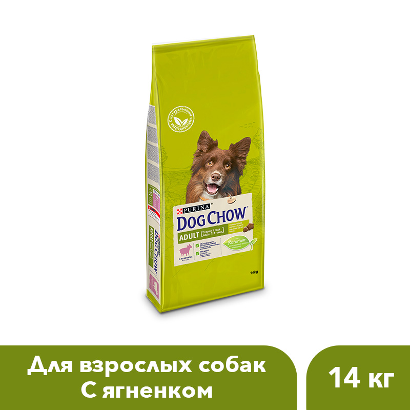 Dog Chow dry food for adult dogs over 1 year old with a lamb, 14 kg