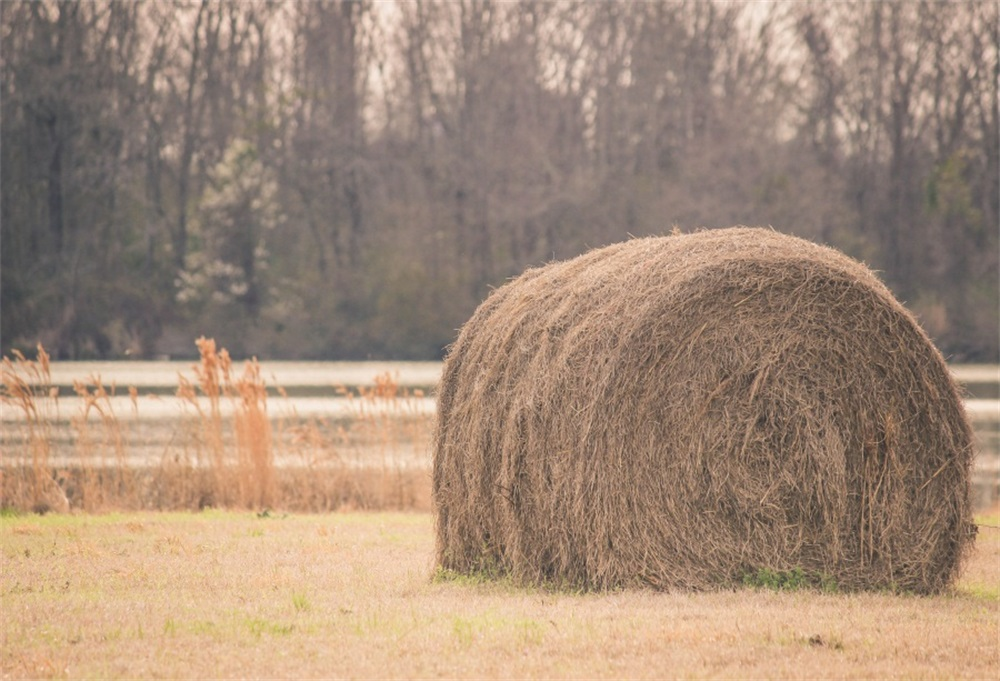 Laeacco Rural Farm Field Hay Bale Photography Backgrounds Customized Photographic Backdrops For Photo Studio