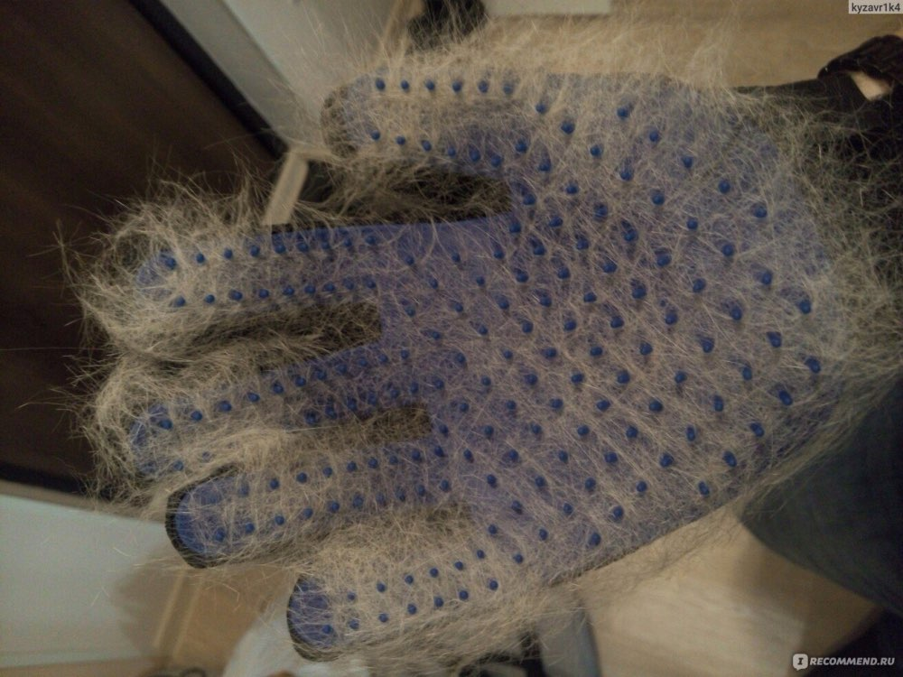 Silicone Grooming Glove photo review