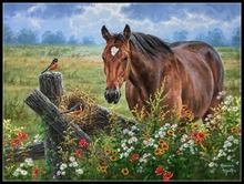 Horse Bird   Counted Cross Stitch Kits   DIY Handmade Needlework For Embroidery 14 ct Cross Stitch Sets DMC Color