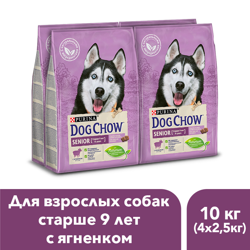 Dog Chow dry food for adult dogs over 9 years old with a lamb, 10 kg. dog chow dry food for adult active dogs over 1 year old with chicken 14 kg