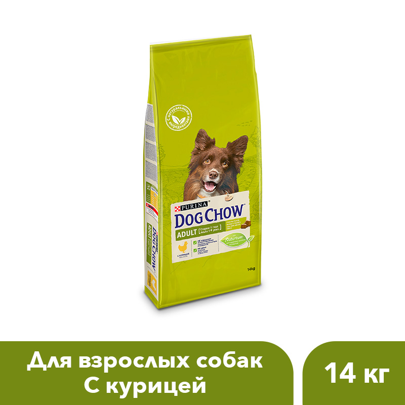 цена Dog Chow dry food for adult dogs over 1 year old with chicken, 14 kg