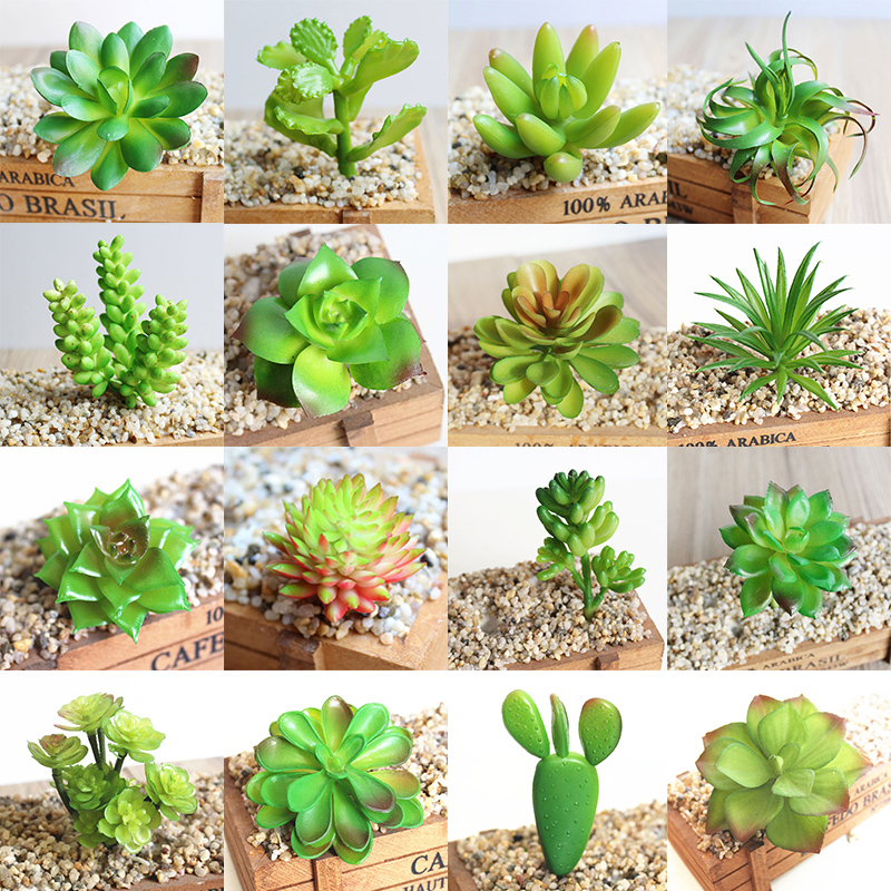 Simulation-Decor Decoration Arrangement Plant Plastic Flower Beautiful Micro-Landscape title=