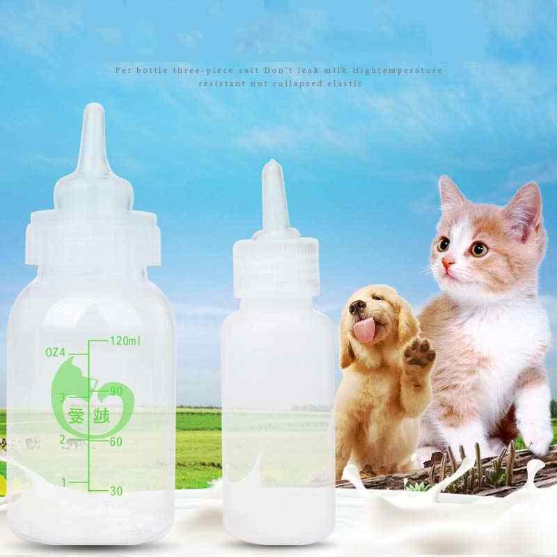 น้ำยางป้อนทารกจุกนมP Acifierน้ำพยาบาลนมBiberon Chatonขวดนมลูกแมวให้อาหารซิลิกาเจลชุดแปรงสำหรับสัตว์เลี้ยงE