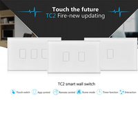 TC2 US AU 1 2 3 Gang New Arrival Smart Home RF Touch Light Switches 110V
