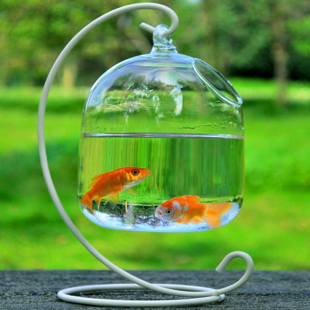 Clear Hanging Glass Aquarium Fishbowl Fish Tank Flower Plant Vase Handmade Decor Hanging Bowl Home Wall Decor without Hanger 2