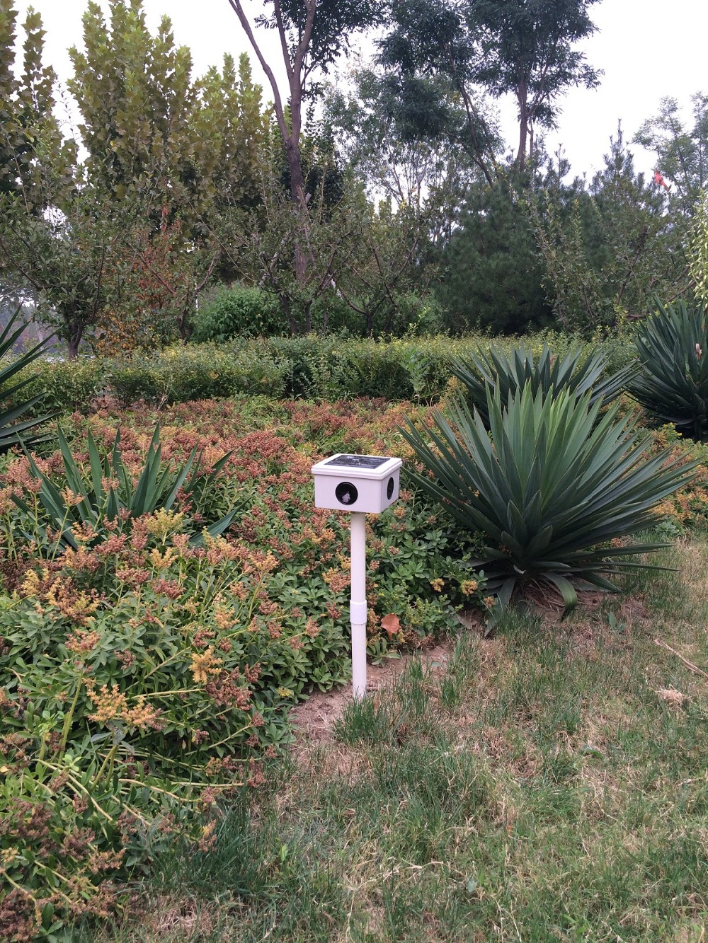 US $56 97 20% OFF|Solar Power Bird Repeller Repellent Deterrent Pigeon  Scarer Strong Ultrasonic Sound Bird Scare Pest Control For Garden  Orchard-in