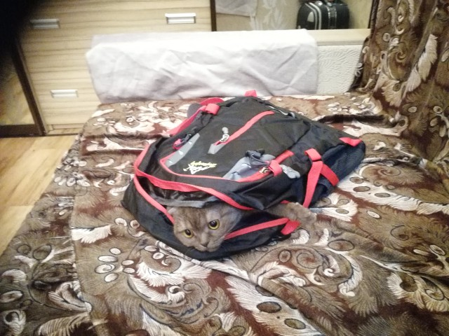 Aelicy Oxford Laptop Backpack Men Women Bolsa Mochila Large Capacity School Bag Backpack for Teenagers Mochila Masculina 2018 photo review