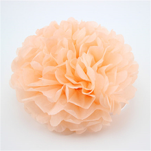 VOILEY Baby Shower 5pcs 10 15 20 25 cm Pom Pom Tissue Paper Pompom Flower Happy Birthday Party Wedding Decorations for Home,8