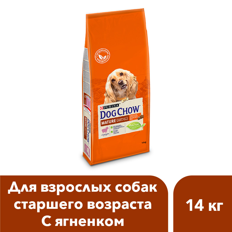 Dog Chow dry food for adult dogs over 5 years old with a lamb, 14 kg dog chow dry food for adult active dogs over 1 year old with chicken 14 kg