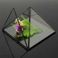 Modern Succulent Plant Box Tabletop Planter Irregular Glass Geometric Terrarium for Fern/Moss/Succulent/Cacti