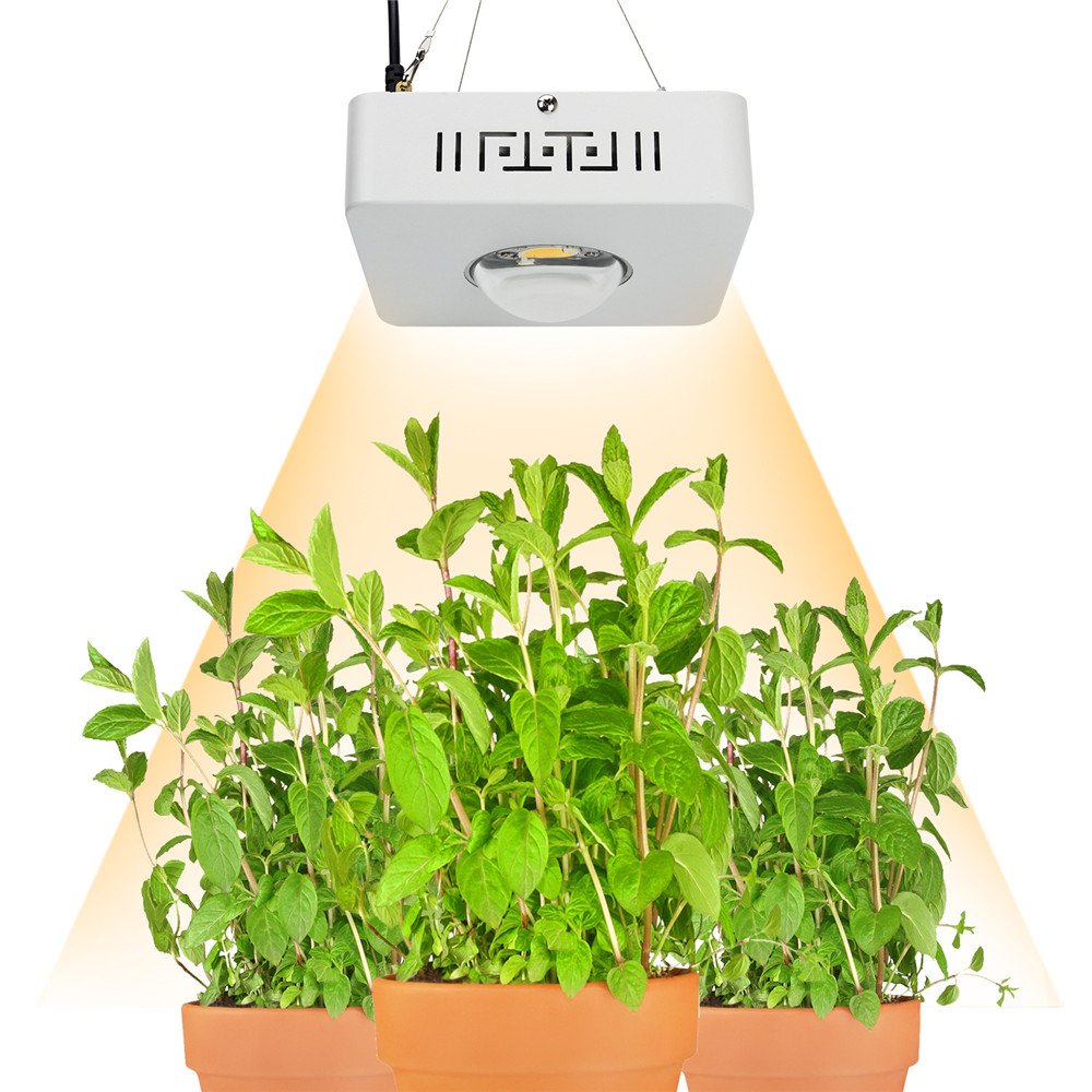 Lamp Plant Us 149 95 34 Off Cob Led Grow Light Full Spectrum Cree Cxb3590 100w 12000lm 3500k Replace Hps 200w Growing Lamp Indoor Led Plant Growth Lighting In