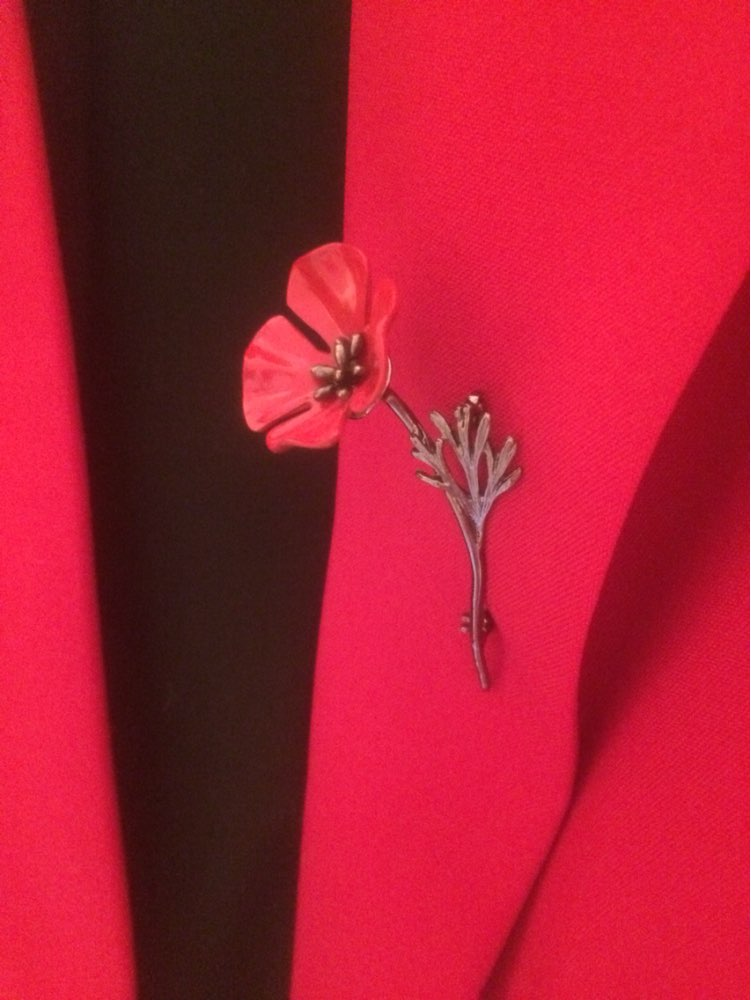Red Poppy Flower Brooch Vintage Collar Pins Brooches Pins*