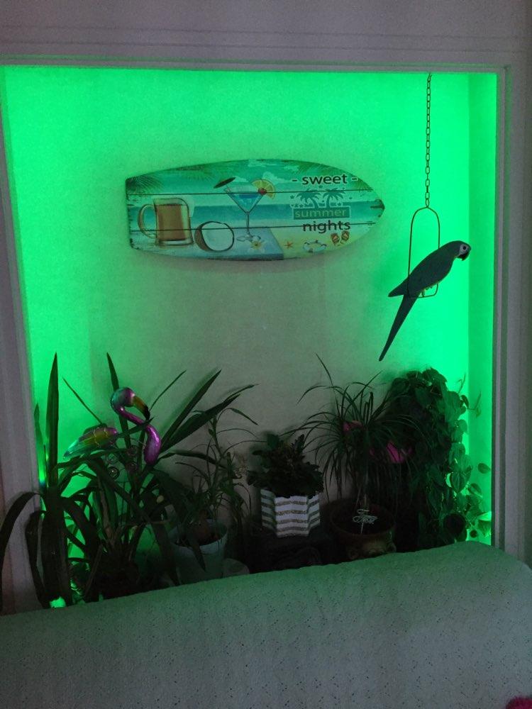 лампа USB; кухня органа; Сертификации:: се; светодиодный экран для сцены;