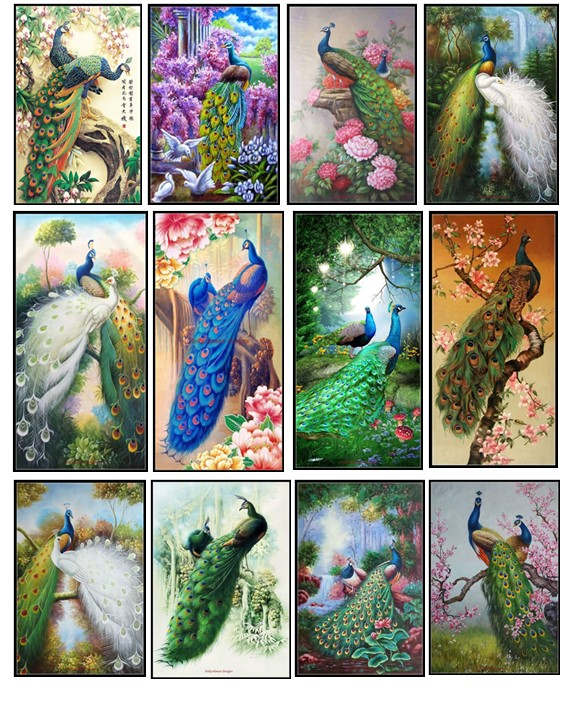 Embroidery Counted Cross Stitch Kits Needlework - Crafts 14 Ct DMC Color DIY Arts Handmade Decor - Peacock Collection