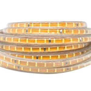 Image 2 - LAIMAIK LED 스트립 라이트 키트 SMD3014 AC220V 120led/M 화환 테이프 IP67 방수 LED 조명 스트립 + EU 플러그 Led 스트립 조명