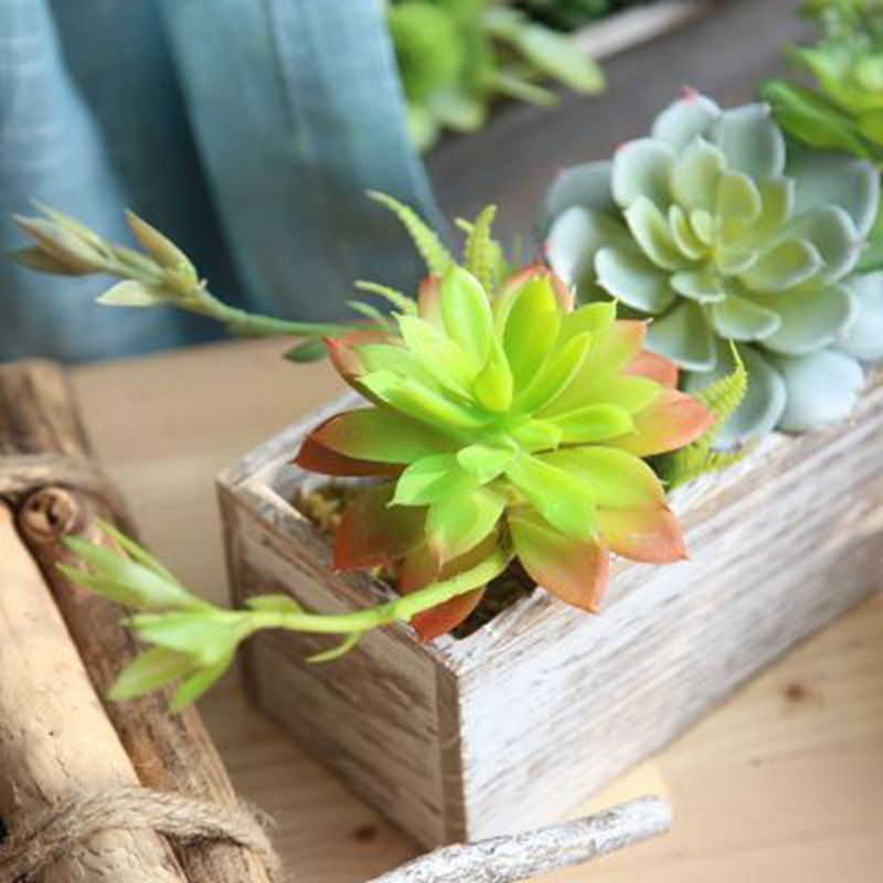 5pcs/lot Artificial flower simulation flower creative Succulents micro - landscape simulation of meat plant for christmas day