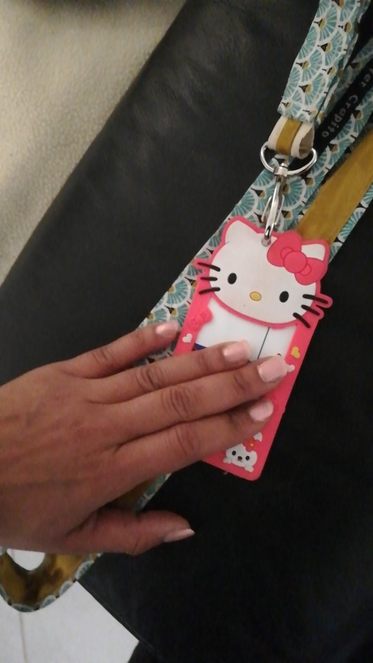 YIYOHI Cartoon Totoro Hello Kitty Bank Credit Card Holders Unisex Silicone Neck Strap Card Bus ID Holders Identity Badge Lanyard photo review