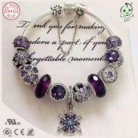 Best качество luxuxious и приятный Серебряные ювелирные изделия подарок благородный фиолетовый серебряный шарм серии 925 натуральная Серебряная С