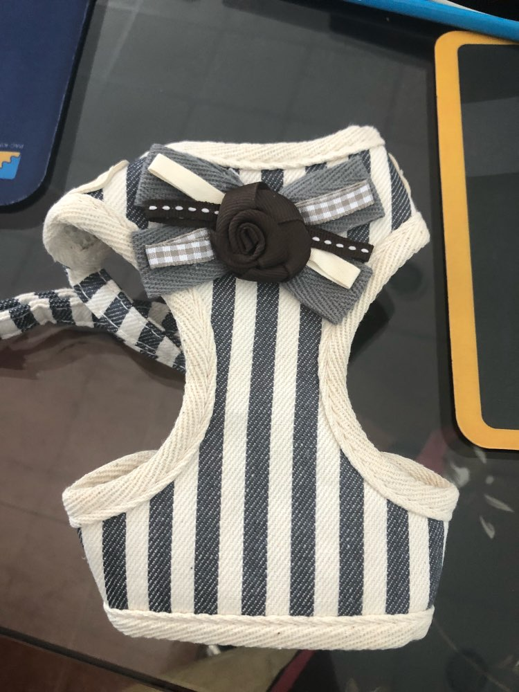Fashion Stripe Vest Cloth Chest Strap Small Dog Cat Halter Harness Lead 6044025 Pet Puppy Leash Supplies S M L XL