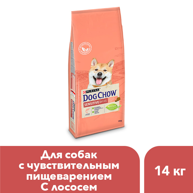 Dog Chow dry food for adult dogs over 1 year old with sensitive digestion with salmon, 14 kg dog chow dry food for adult active dogs over 1 year old with chicken 14 kg