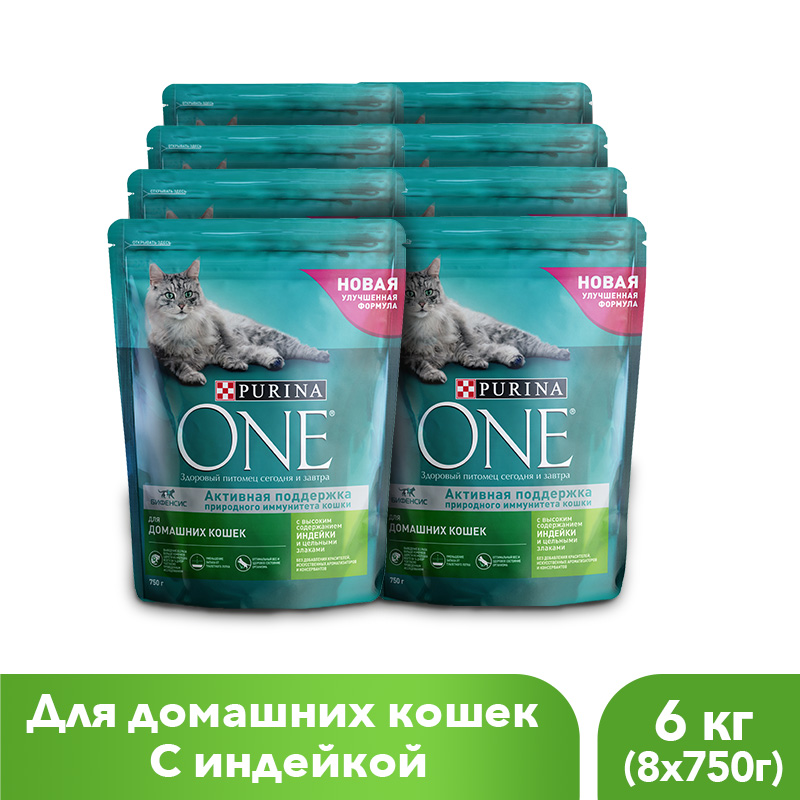 Purina ONE dry food for domestic cats with turkey and whole grains, 6 kg. 1 6 scale atom cats rorty womens collectible full set action figure model toys gifts collections with body head clothe