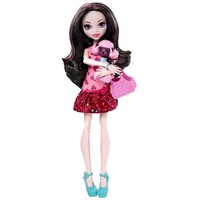 Doll Monster High Draculaura with pet