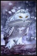 Nakış Sayılan Çapraz dikiş kitleri İğne El Sanatları 14 ct DMC Renk DIY Sanat El Yapımı Dekor Soğuk Beyaz Baykuş