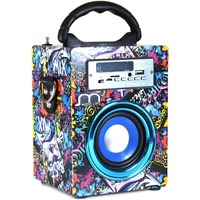 Portable Bluetooth Speaker Wireless FM Radio USB Rechargeable TF Card with Remote