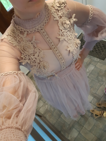 Women Fashion Dress Stand Collar Lantern Sleeve Mesh Dress See Through Lace Embroidery Fairy Dress Femme Vestidos Robe photo review
