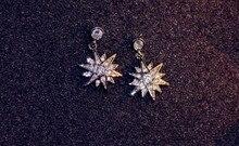2017 New Earrings 925 silver Crystal from Swarovski Wholesale Charm Women Fine Jewelry fit Original Woman snowflake Earrings