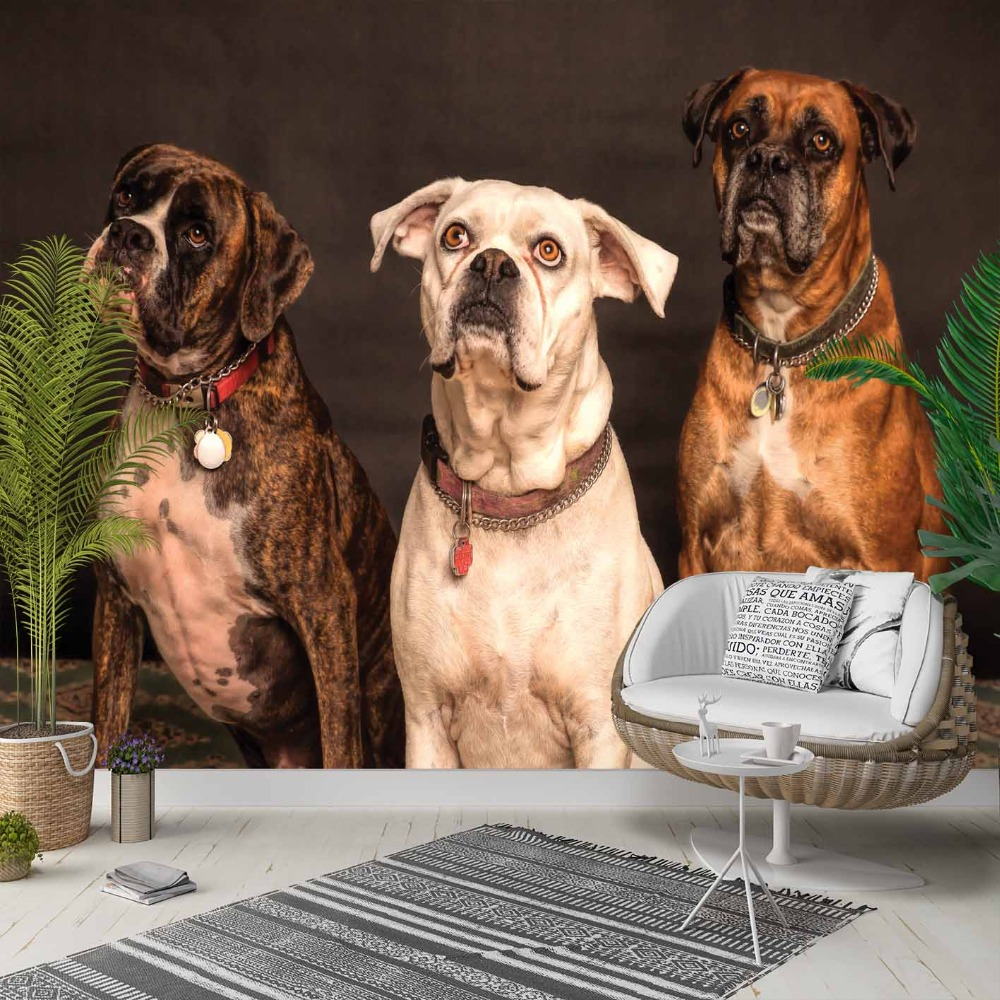Else Brown Black White Cute Dogs Animals 3d Photo Cleanable Fabric Mural Home Decor Living Room Bedroom Background Wallpaper