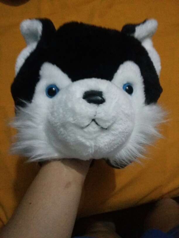 Detalle Comentarios Preguntas sobre Lobo Husky perro de algodón de ... 08b2f31f460