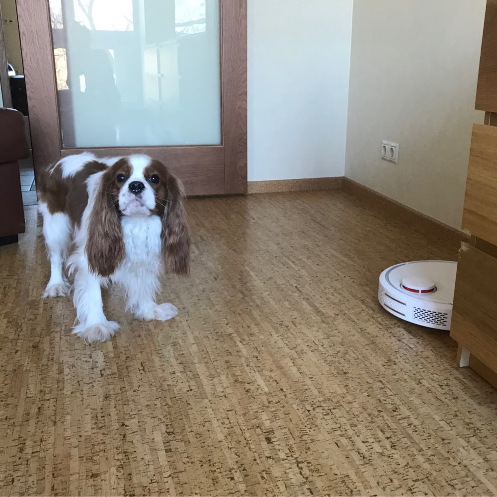 Global Version Original XIAOMI MI Robot Vacuum Cleaner MI Robotic Smart Planned Type App Control Auto Charge LDS Scan Mapping