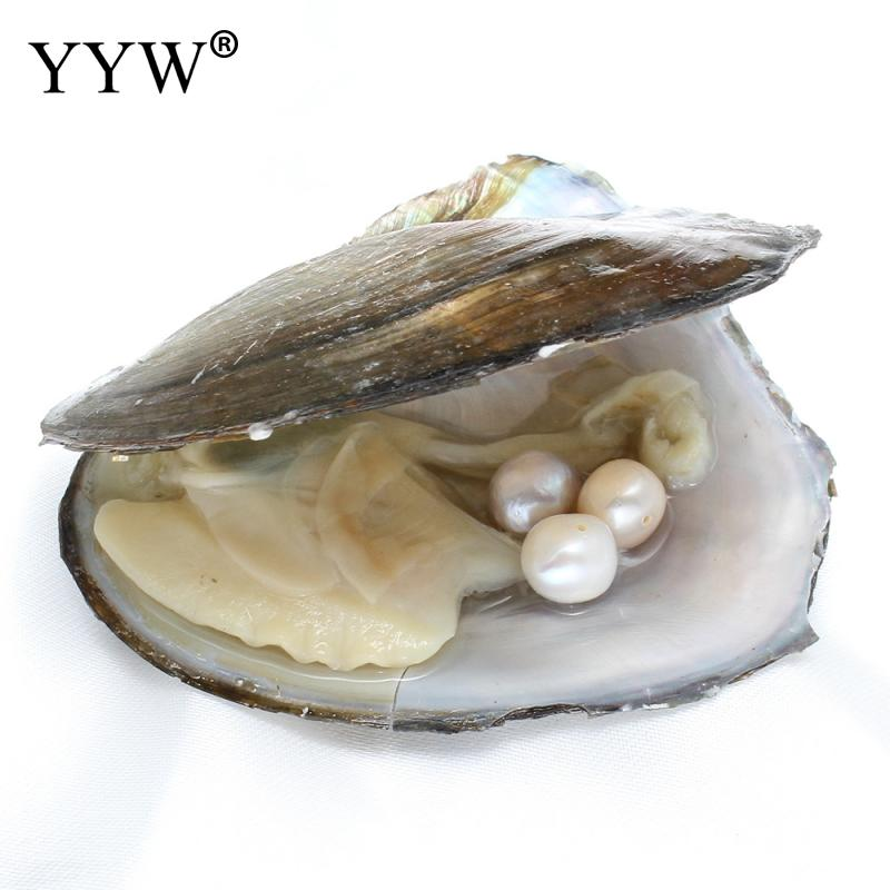 YYW Crafts Gifts 9-10mm Potato Pearl Beads inside Vacuum packed Natural Freshwater Cultured Love Wish Pearl Mussel Shell Oyster