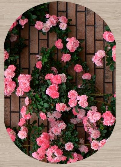 Else Brown Brick Stone Pink Roses Flowers 3d Pattern Print Non Slip Microfiber Living Room Modern Oval Washable Area Rug Carpet